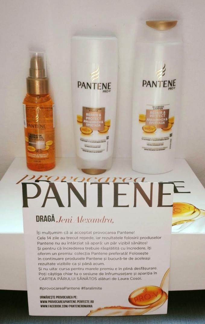 felicitari_pantene