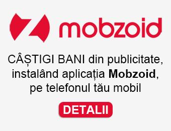 MOBZOID